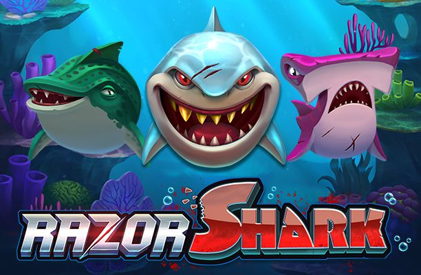 razor shark push gaming
